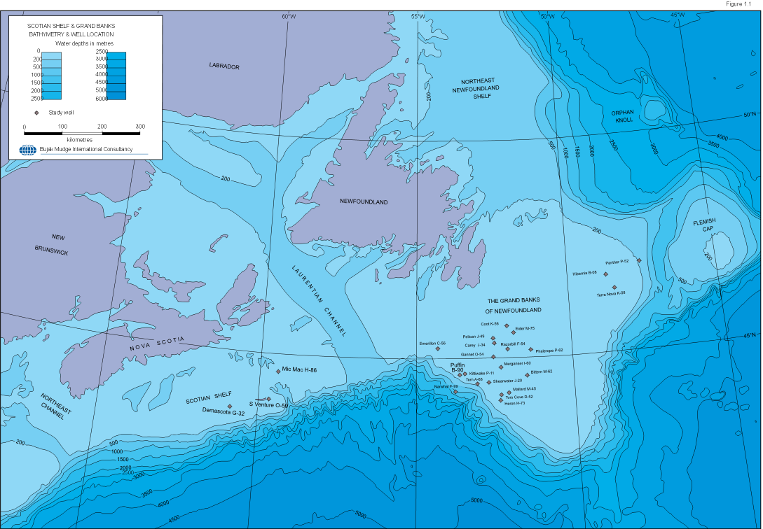 WHALE LOCATION MAP
